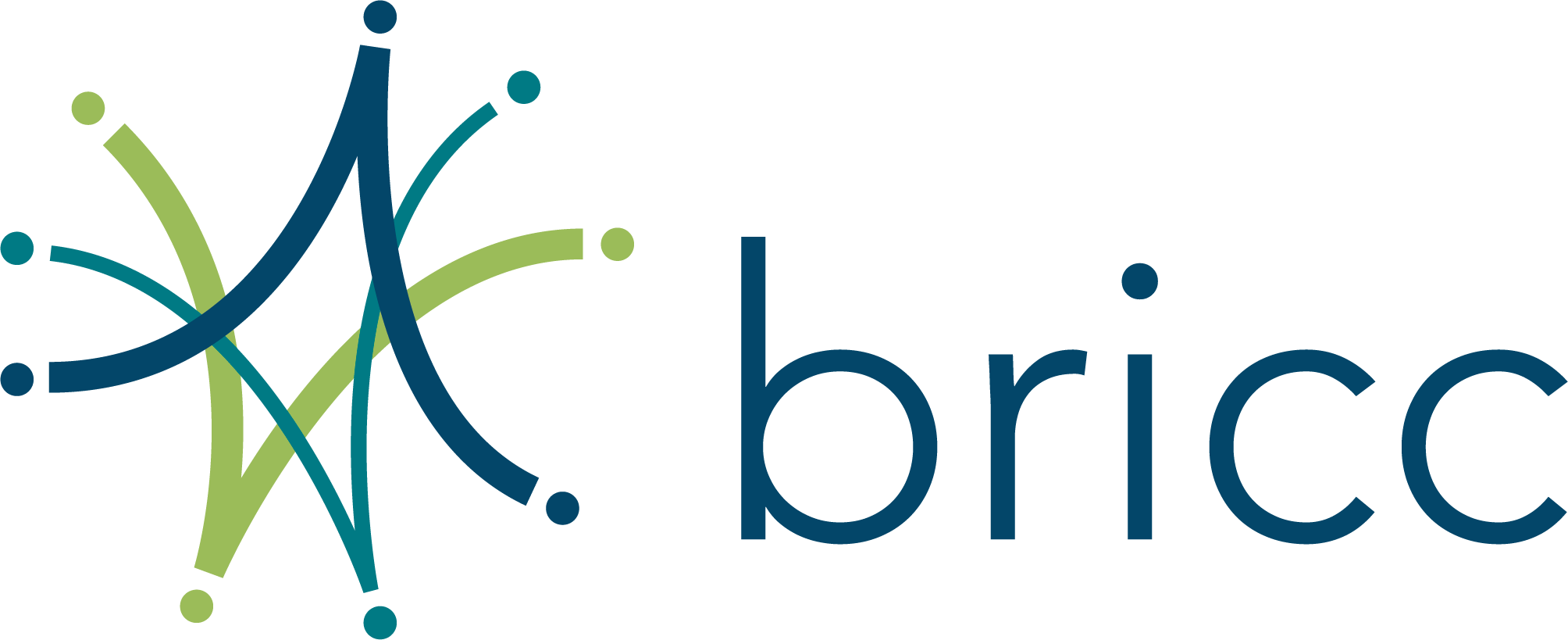 bricc_logo